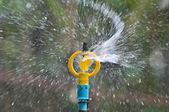 Water sprinkler  — Stockfoto