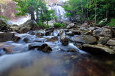 Flowing mountain stream — Stock Photo