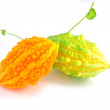 Stock Photo: Balsam pear
