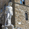 Fountain of Neptune  in Florence, Italy — Stock Photo
