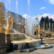 Fountains of Peterhof, Russia — 图库照片