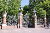 The fence of the Mikhailovsky Garden in St. Petersburg, Russia — Stockfoto