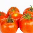 Photo of very fresh tomatoes presented on white background — Stock Photo