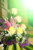 Summer flower background. — Stock Photo