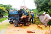 Vietnamese farmers threshing rice — Stock Photo