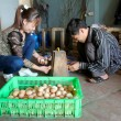 Vietnamese farmer to check egg in incubator — Stock Photo
