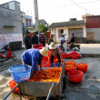 Stock Photo: Farmers washing and classification carrot after harvest