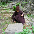 Stock Photo: Monk weeding in garden pagoda