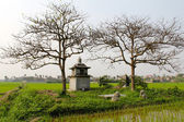 Ancient tomb of a wealthy woman in feudal times, vietnam — ストック写真