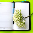 Stock Photo: Note book