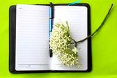 Livro de nota — Foto Stock