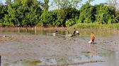 Fishermen fishing in the lagoon — Stock Photo