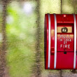 Stock Photo: Red Fire alarm