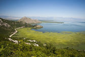 Skadar lake landscape — Stock Photo
