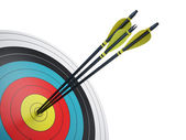 Arrows hitting the center of target - success business concept — Stock Photo