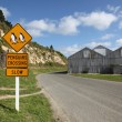 Penguin Crossing Oamaru — Stock Photo