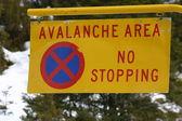 Avalanche Area — Stock Photo