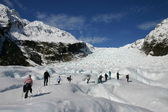 Fox Glacier - New Zealand — Stock Photo