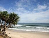 Byron Bay - Australia — Stok fotoğraf