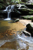 Leura Cascades — Stock Photo