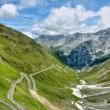Serpentine road in Alps — Stock Photo #13389431