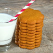 Milk with a straw and gingerbread cookies — Stock Photo