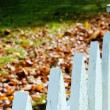 Closeup of white picket fence with autumn leaves — Stock Photo