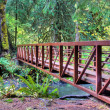 Hiking trail with bridge crossing a river — Stock Photo
