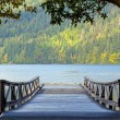 Wooden pier at Lake Crescent Washington — Stock Photo