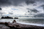 Ocean landscape at the coast of Northwest Pacific — Stock Photo