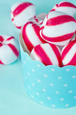 Closeup of peppermint candy — Stock Photo