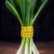 Bunch of green onions — Stock Photo #15837067