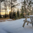 View at wintry landscape — Stock Photo #16927181