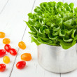 Fresh tomatos and green salad — Stock Photo