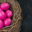Pink eggs in a nest — Stock Photo