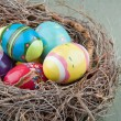 Decorative easter eggs in a nest — Stock Photo #19224785