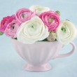 Ranunculus flowers in a pink cup — Stock Photo #19225101