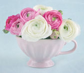 Ranunculus flowers in a pink cup — Stock Photo