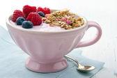 Owoce i jogurt z musli — Zdjęcie stockowe