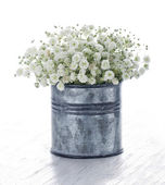 Bouquet of white gypsophila on wooden background — Stock Photo