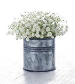 木制背景上的白色满天星的花束 — 图库照片