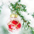 Red Christmas bauble hanging outdoors in a Xmas tree — Stok fotoğraf