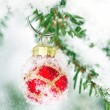 Red Christmas bauble hanging outdoors in a Xmas tree — Stockfoto