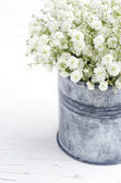 Bouquet of baby's breath flowers, on wooden background — Photo