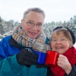 Smiling senior couple outside in wintry landscape — Stock Photo