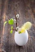 Easter decoration in a white egg shell — Stock Photo