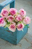 Rosas en una vieja canasta de jardinería de madera azul — Foto de Stock