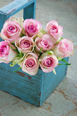 Roses in an old blue wooden gardening basket — Foto de Stock