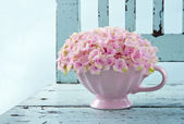 Cup full of pink hydrangea on vintage chair — Stock Photo