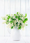 Bouquet of white bird cherry branches — Stock Photo